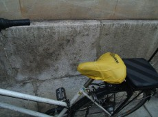 Rad mit Sattelschutz